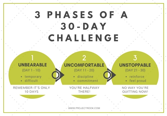 Project Rook 3 Phases of 30-Day Challenge